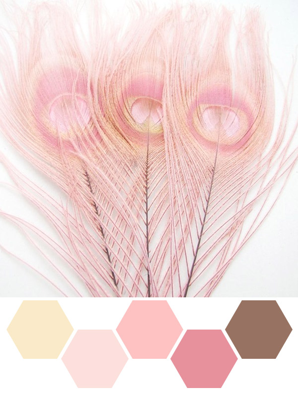 Inspired by Pink Feathers - Indie Wed